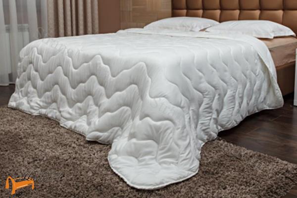 Аскона -  Аскона Одеяло Calipso