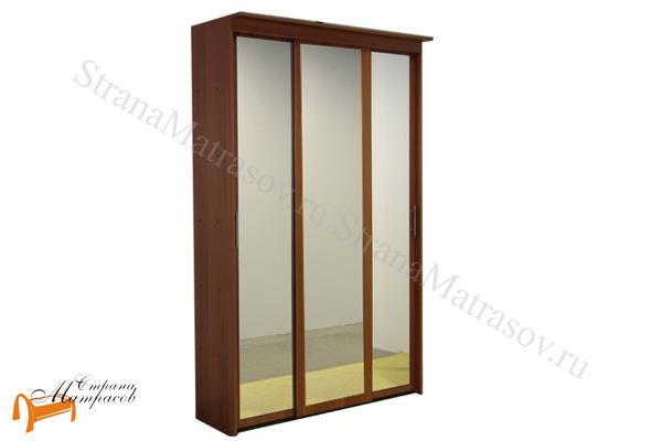 Орматек -  Шкаф - купе Эконом 3-х дверный (глубина 450мм) с 3 зеркалами