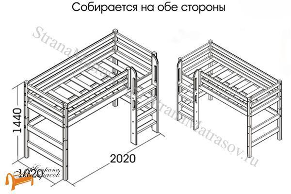Райтон Кровать полувысокая Отто 5 с прямой лестницей и основанием , натуральное дерево, сосна, кровать - чердак, двухъярусная