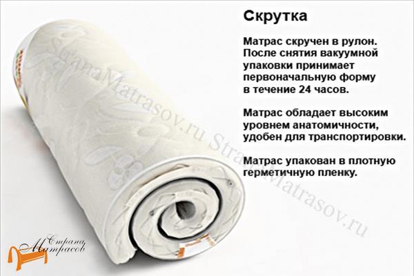 Райтон Ортопедический матрас Sofa Relax (для кроватей и диванов) , Софа релакс, для диванов, для кресел, рулон, пена Raitex, бязь