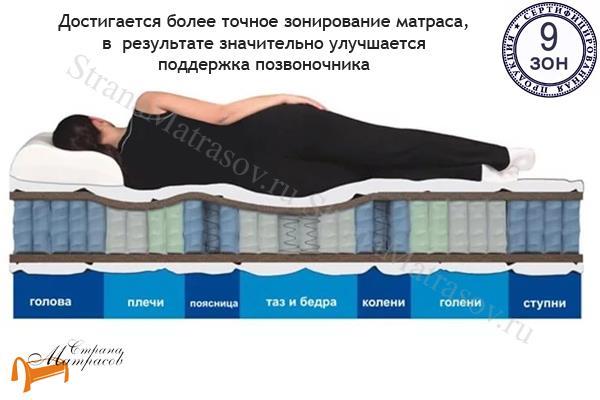 Райтон Ортопедический матрас OrtoBio P (Plush)  EVS 760 9-zone , 9 зон у матраса, латекс, независимый пружинный блок, лен