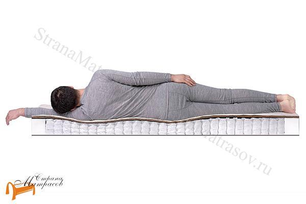 DreamLine Ортопедический матрас SleepDream Medium TFK 550 , независимый пружинный блок,